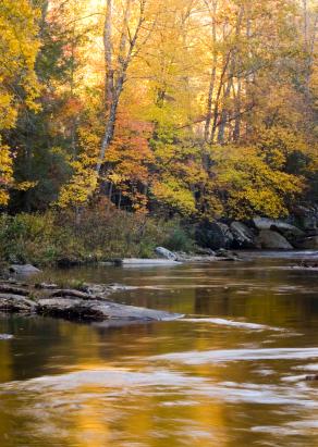 Gatlinburg Fall Season