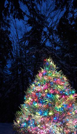 christmas winter magic