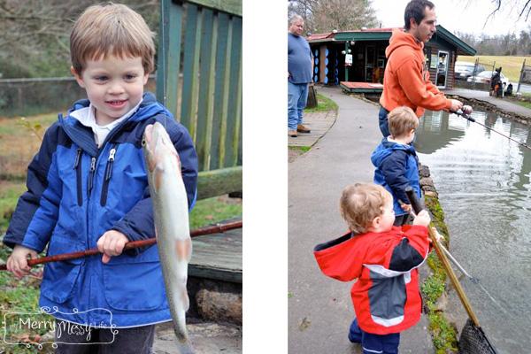 trout fishing in gatlinburg