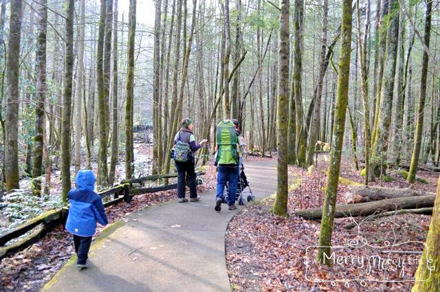 a guided hike in gatlinburg