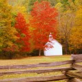 fall-colors-featured