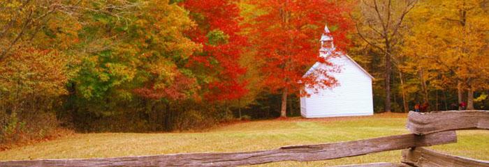 Smoky Mountains Fall Foliage 2013