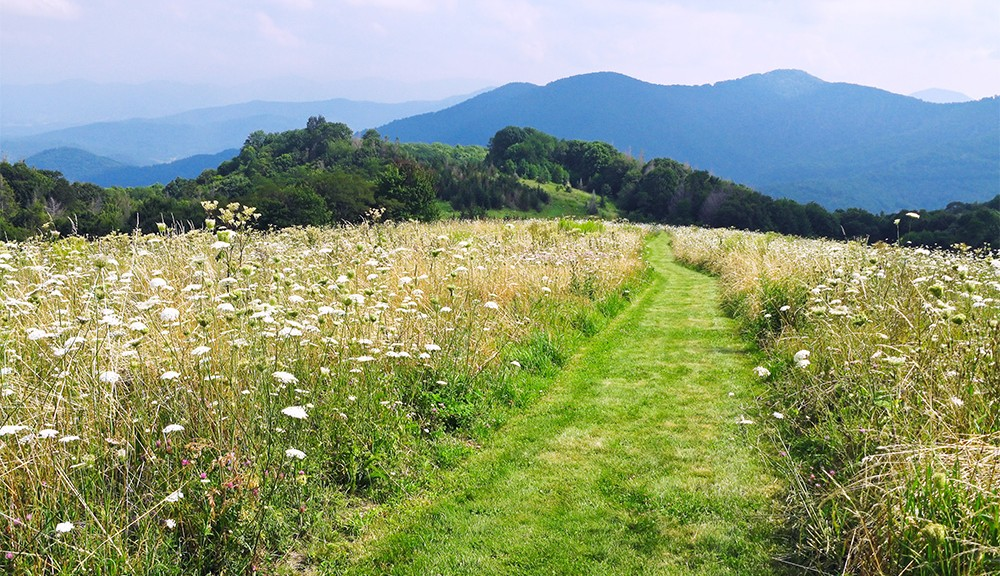 springtime hikes in smoky mountains featured