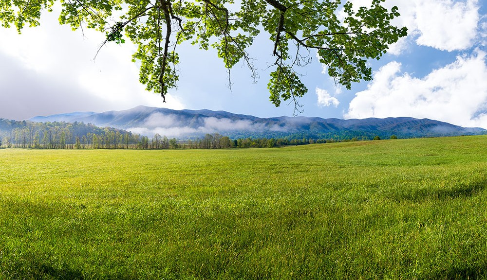 beginnings of great smoky mountains national park featured