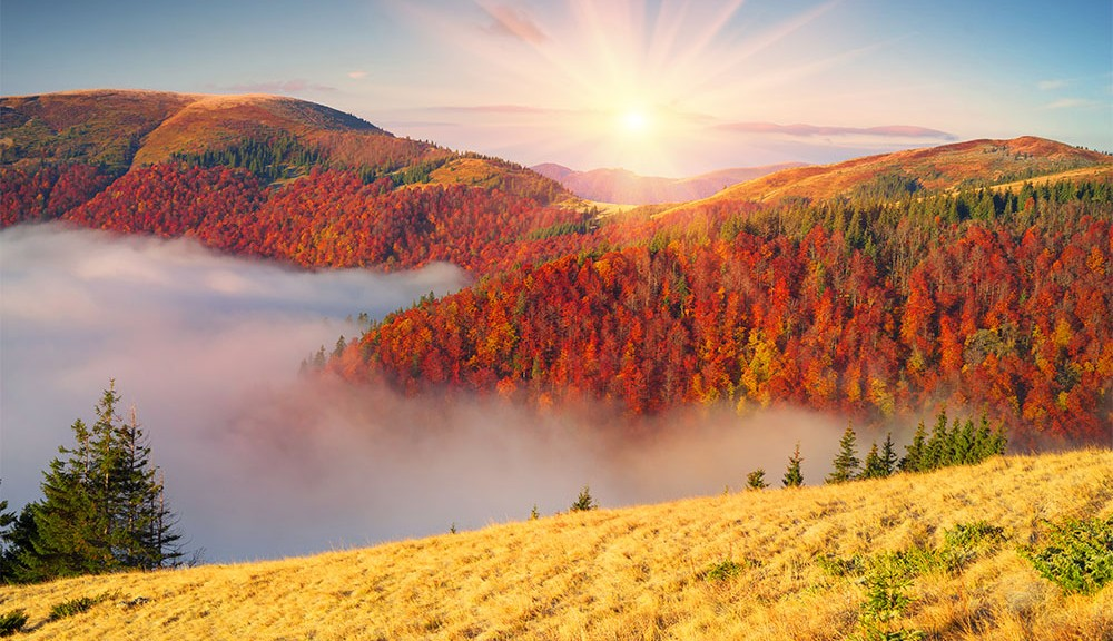 4 reasons to visit gatlinburg in fall featured
