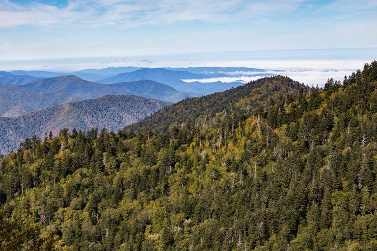Thankful for Gatlinburg — a Special Place in the Smokies & Our Hearts!
