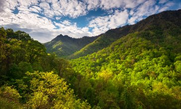Make a Difference Day — Volunteer in the Smokies