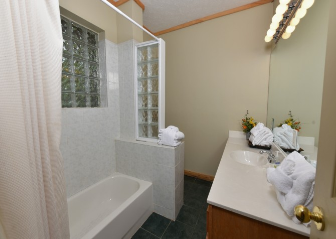Pigeon Forge - Country Bears Cabin - Bathroom