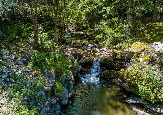 Beside Still Waters Resort - Creek