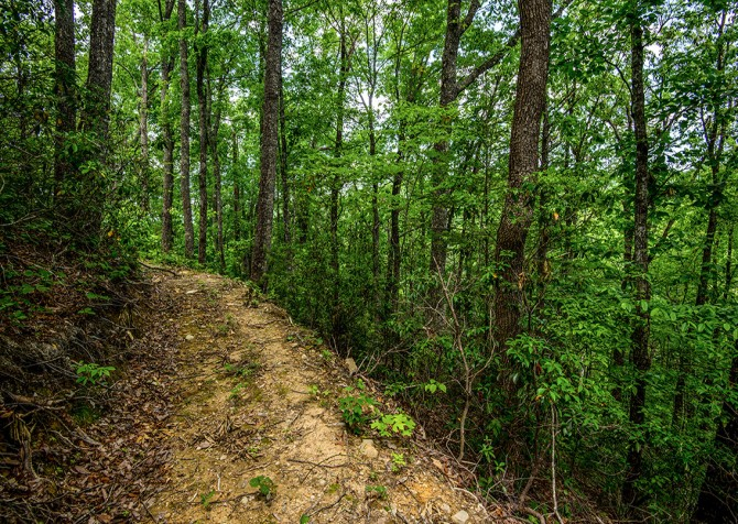 Beside Still Waters Resort - Hiking Trail