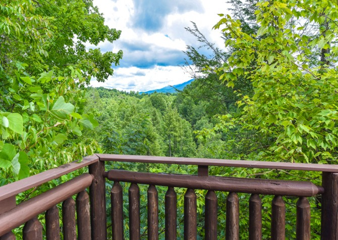 Gatlinburg Cabin - Bear Elegance - View