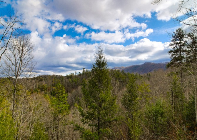 Pigeon Forge Cabin- Almost Bearadise - View