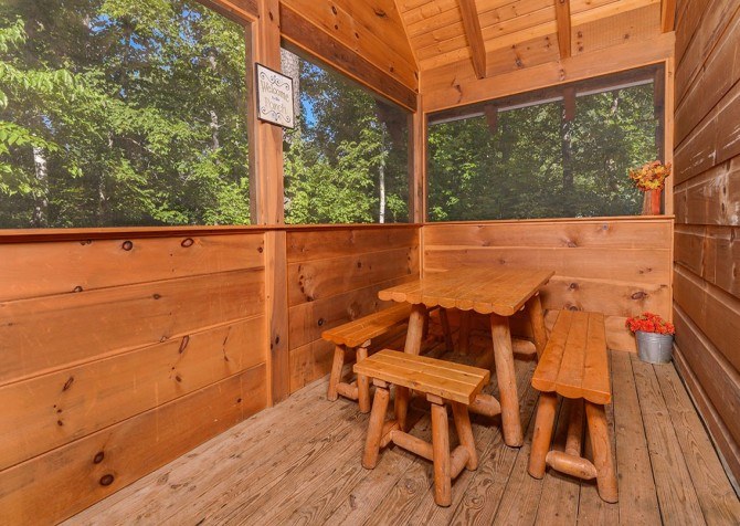 Pigeon Forge Cabin -Awesome Getaway and a Theater – Screened Picnic Area