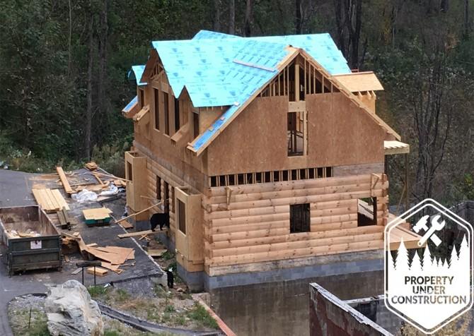 Gatlinburg - Big Bear Views Lodge - Bears at Constructed Cabin
