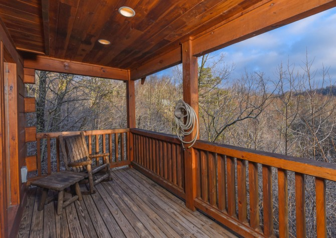 Gatlinburg - A Bear's Eye View - Exterior