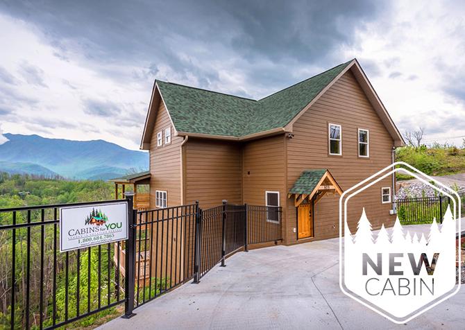 Beartastic Mountain View Lodge