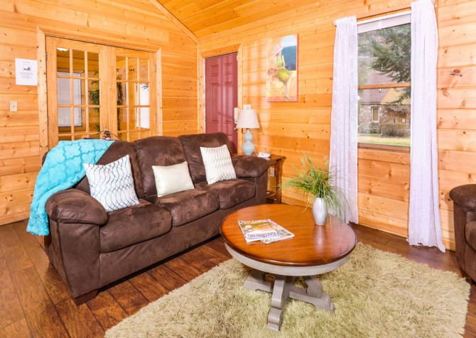 Gatlinburg Cabin - Skinny Dipping - Living Room
