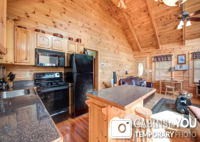 Pigeon Forge - Absolutely Perfect - Kitchen Temp
