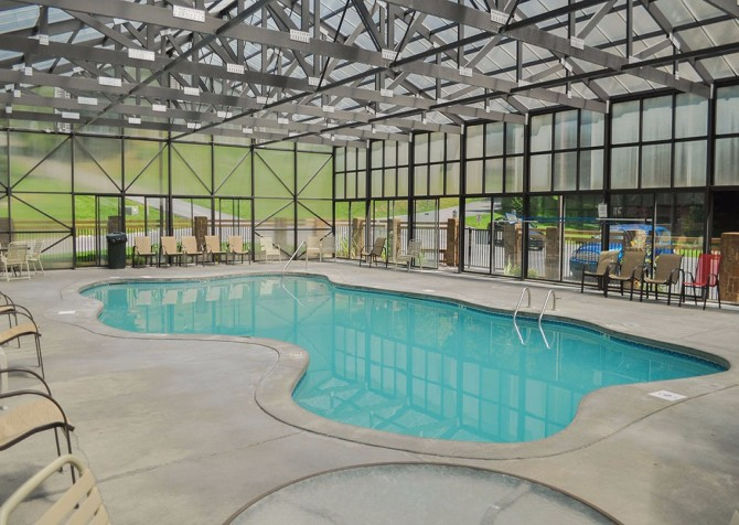 Pigeon Forge Cabin - Bear Essentials - Resort pool