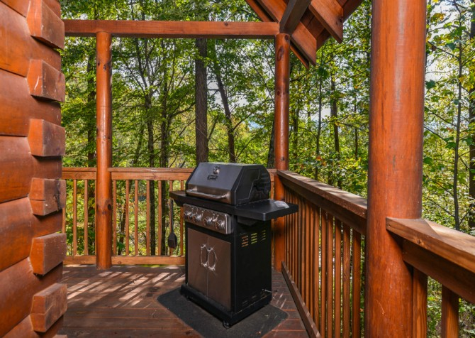 Pigeon Forge - Bear Footin' - Grill