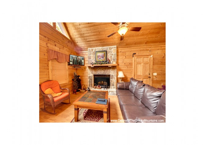 Pigeon Forge - Bear View - Living Room Temp