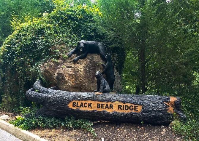 Pigeon Forge - Black Bear Ridge Resort