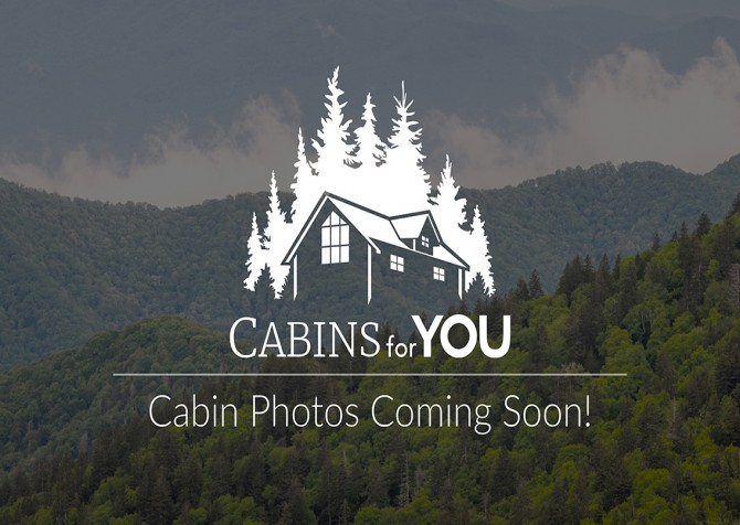 Pigeon Forge - Lazy Bear Cabin - Temp Photo