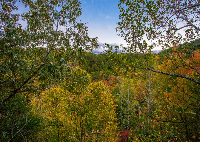 Pigeon Forge - Majestic Forest - View
