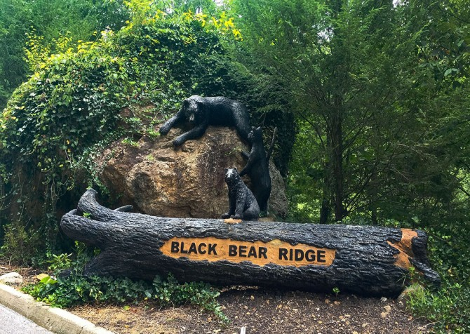 Pigeon Forge - Black Bear Ridge Mountain Views - Entrance 2
