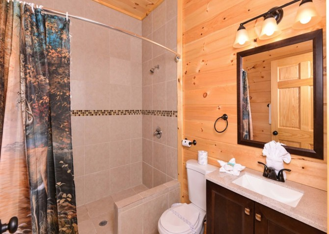 Pigeon Forge Splashin' Bears Retreat Bathroom