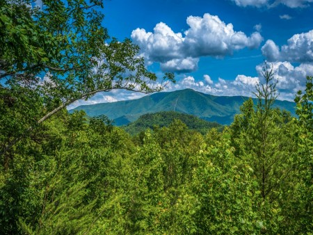 Pigeon Forge Cabin- American Pride – View
