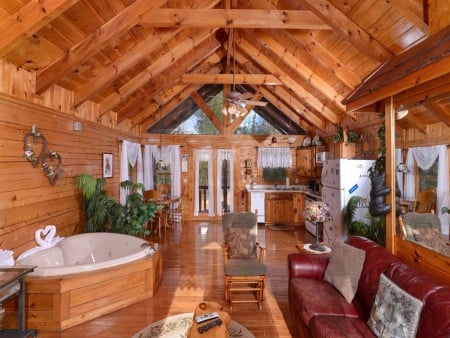 pigeon forge cabin – first flight – living