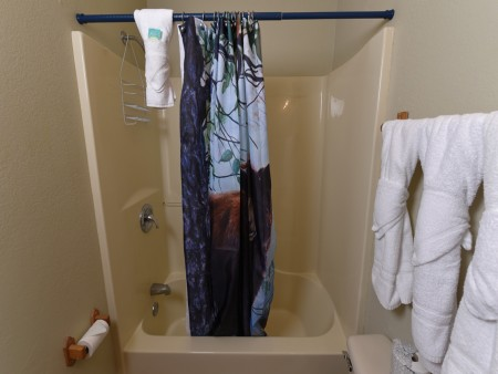 Pigeon Forge - Friendly Bear Lodge - Bathroom