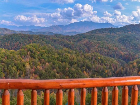 pigeon forge - leconte bear plunge - view