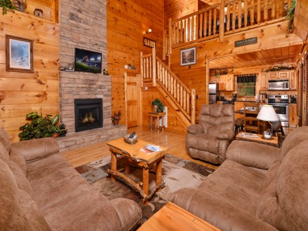 Pigeon Forge - The Looney Bin - Living Room TV