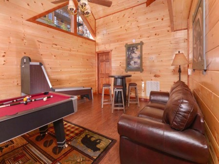 pigeon forge - leconte bear plunge - gameroom