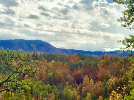 Pigeon Forge Cabin- It's A Wonderful Life – View