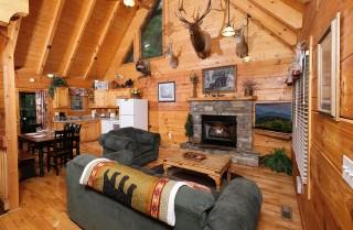 Pigeon Forge - Hikers Hideaway - Livingroom