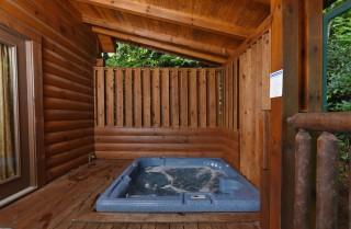 Gatlinburg Cabin Rentals Bear Elegance