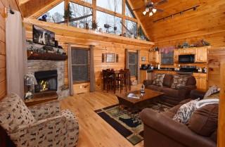 Pigeon Forge - Bear Hiney Hideaway - Living Room