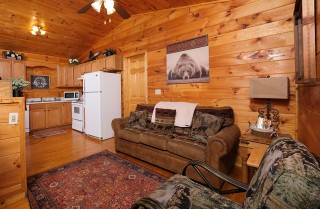 Pigeon Forge - Beary Cozy - Living Room