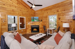 Pigeon Forge - The Pigeon Perch - Living Room