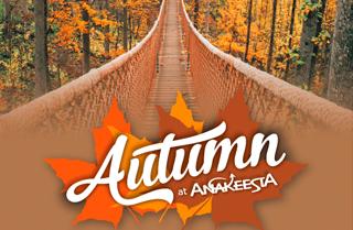 Autumn at Anakeesta