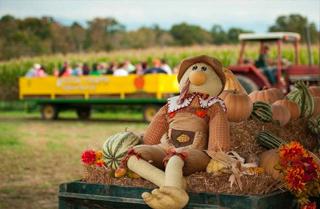 Fall at Kyker Farms